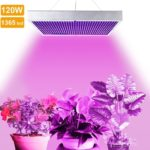 Top 5 Best 120 Watt Led Grow Lights Review For Your Plants