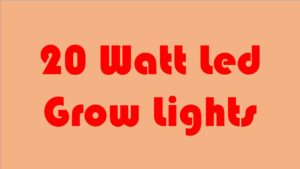 Top 7 Best 20 Watt led Grow lights review for You