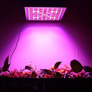 Top 5 Best 45 watt led grow lights review for you.