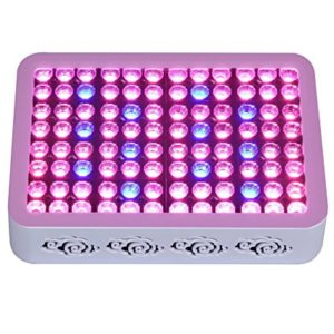 Why You should Choose Led Grow lights for your indoor garden