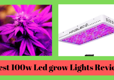 6 Best 1000 Watt Led Grow Lights Review (updated 2019) & Complete Guide