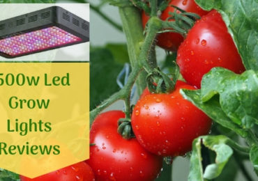 Top 7 Best 1500 Watt Led Grow Light Review Of The Top Rated