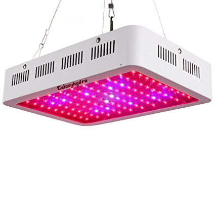 300w led grow light review