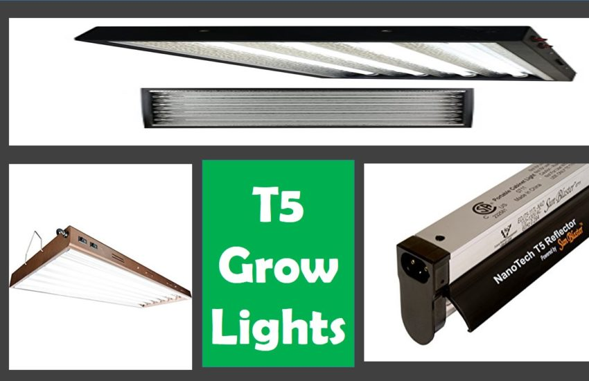 T5 grow lights