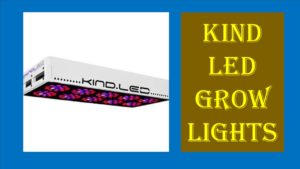 Top 5 Best KIND LED Grow lights Reviews For Your Plant Growth