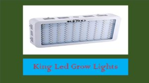 King LED Grow Light Review- For Your Garden