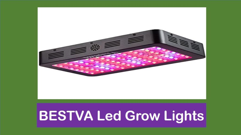 Top 5 Best BESTVA LED Grow Lights Reviews
