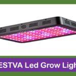 Top 5 Best BESTVA LED Grow Lights Reviews