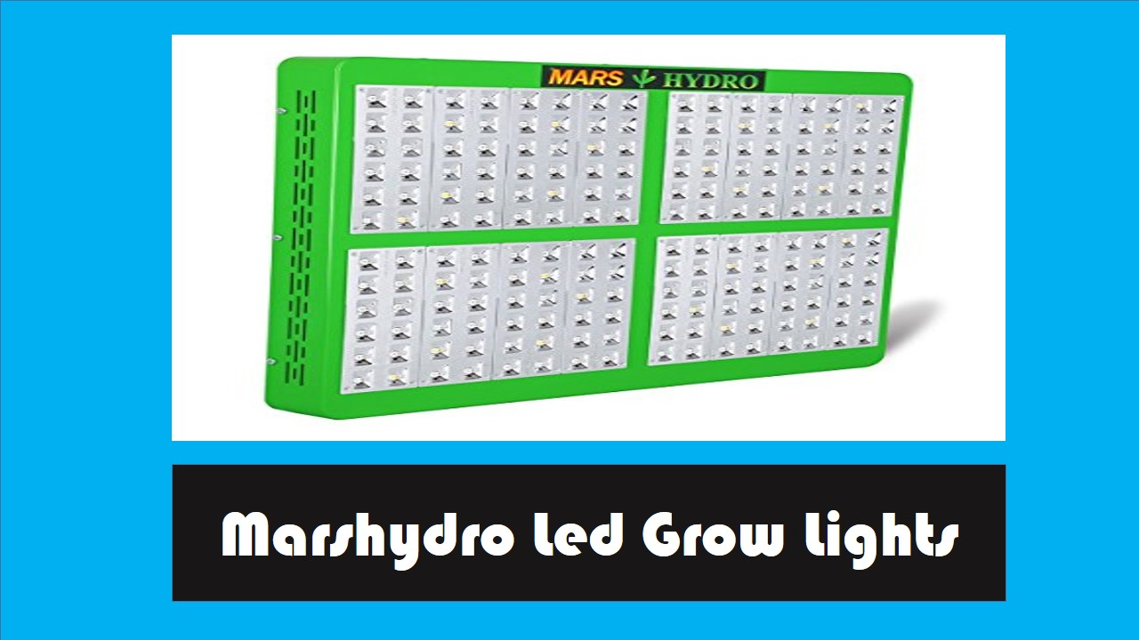 1000 Watt Led Grow Lights