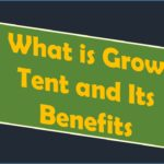 What is a Grow Tent and Its Benefits?