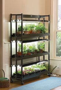 Top 5 Grow Light Stands To Make Indoor Plant Care Easier