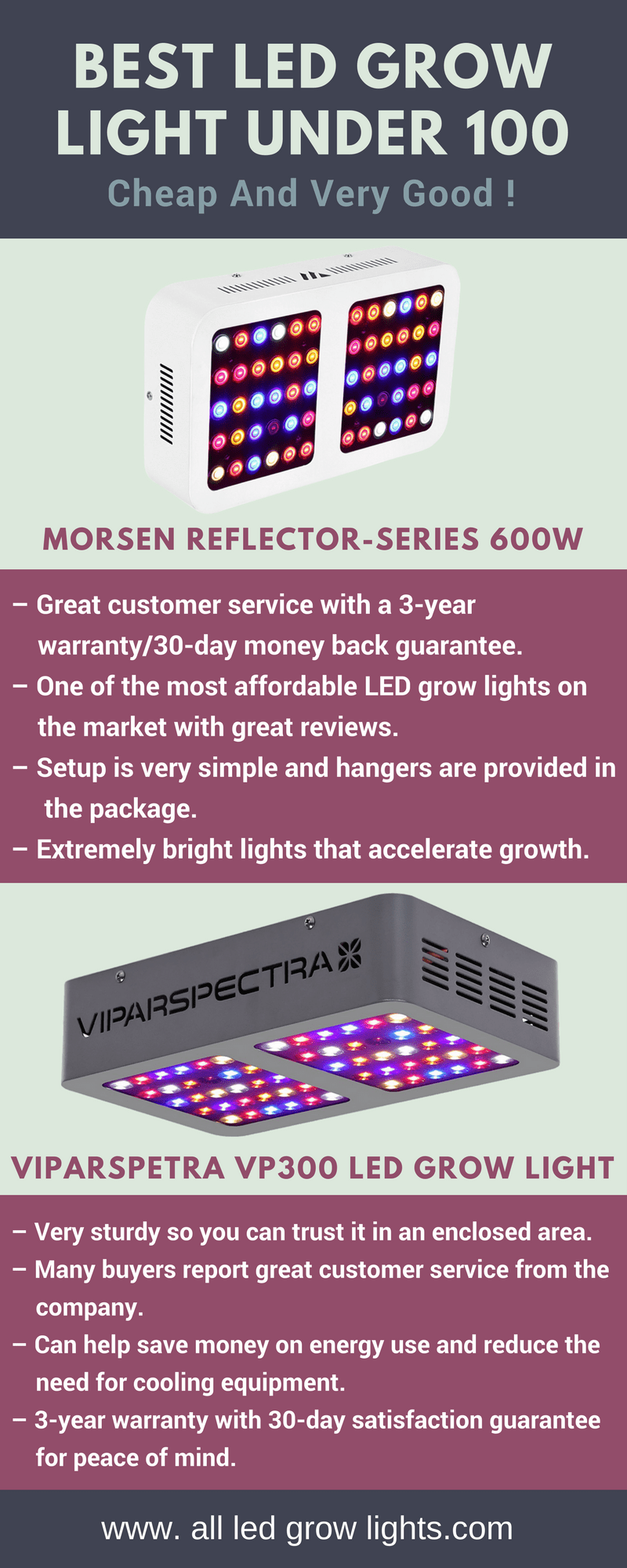 Best LED Grow Light Under 100 info graph