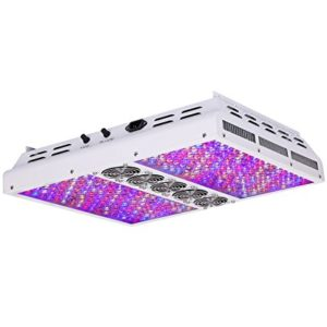 Best LED Grow Light Under 500 Review for indoor plants