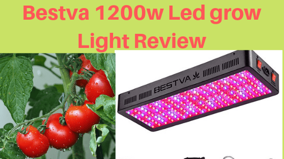 BESTVA 2000W LED Grow Light Review For Indoor Gardener