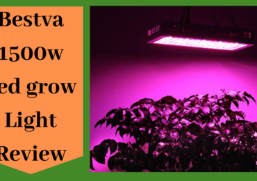 BESTVA 1500W Review-You Should Consider For Your Plants