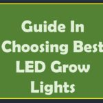 Guide In Choosing Best LED Grow Lights in 2018 For Your Indoor Plants
