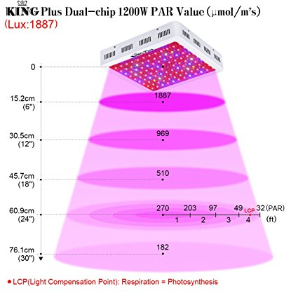 King 1000W LED Grow Light Review -Worth for Money !