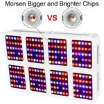 Morsen 2400W LED Grow Light Review For Hydroponics and Green house