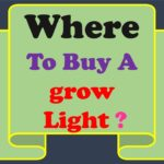 Where to Buy a Grow Light-You Should know about It