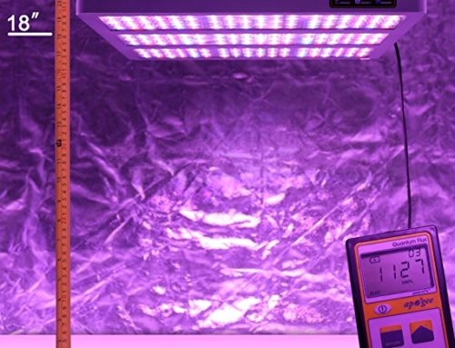 Best LED Grow Light for 5×5 Tent in 2019 For Indoor Growers