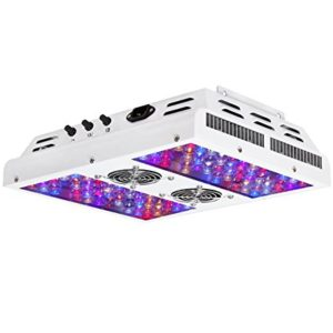 Best LED Grow Light Under 200 For Your Indoor Vegetables
