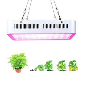 Popular Grow LED Lights Review in 2018
