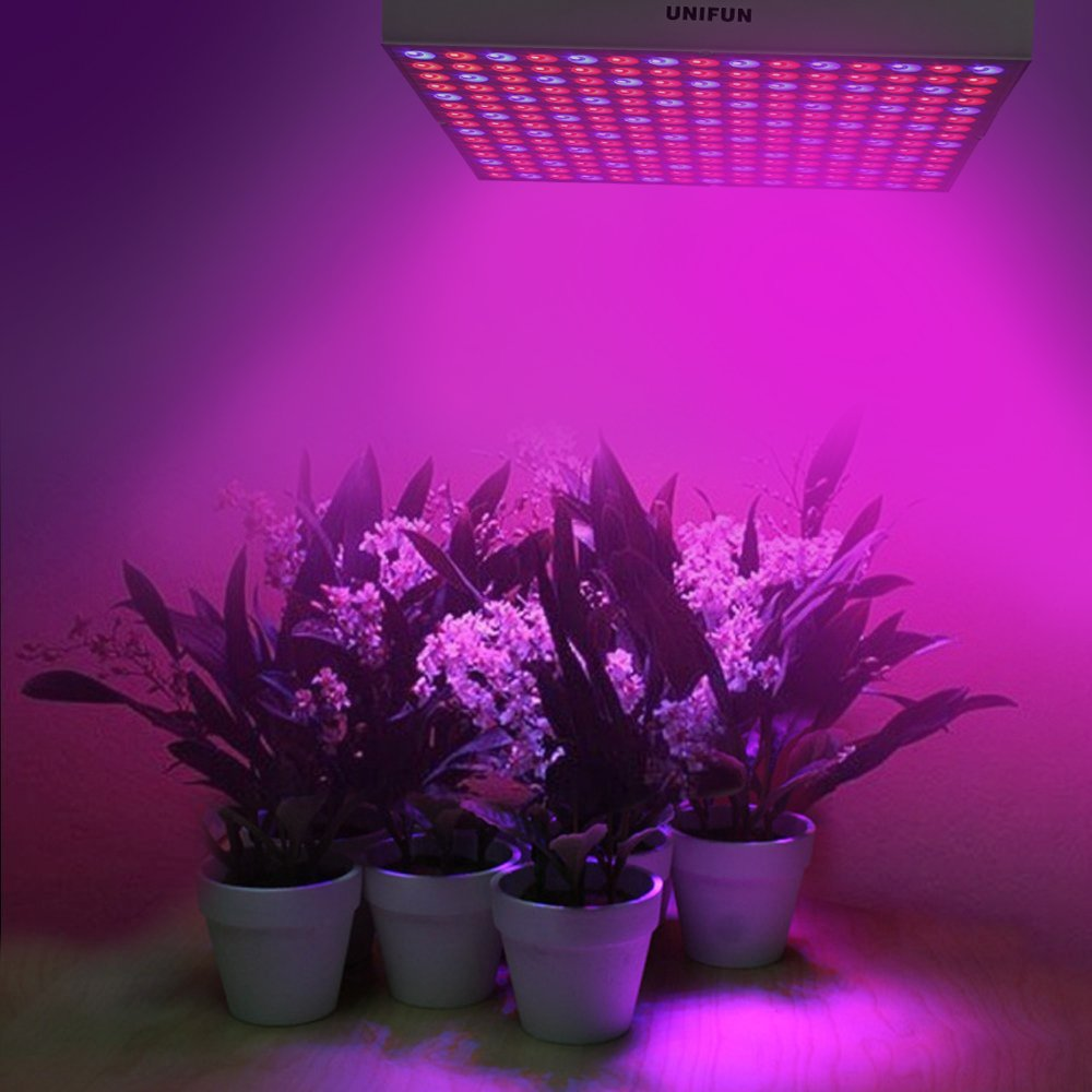 Best Led Grow Lights Buying Guide Updated For Growing