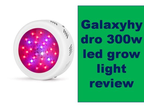 Galaxyhydro 300w led grow light review For Your Indoor Plants