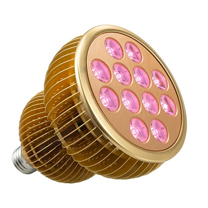 Best Led Grow Light For One Plant
