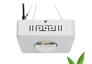 Best 100W LED Grow Light Review For Your Indoor Plants (Updated 2019)