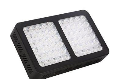 Informative Details About The Best LED Grow Light For 2×2 Tent