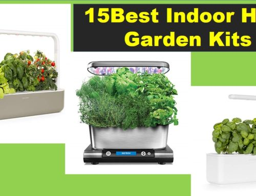 Top 15 Best Indoor Herb Garden Kits Reviews 2019(Updated)