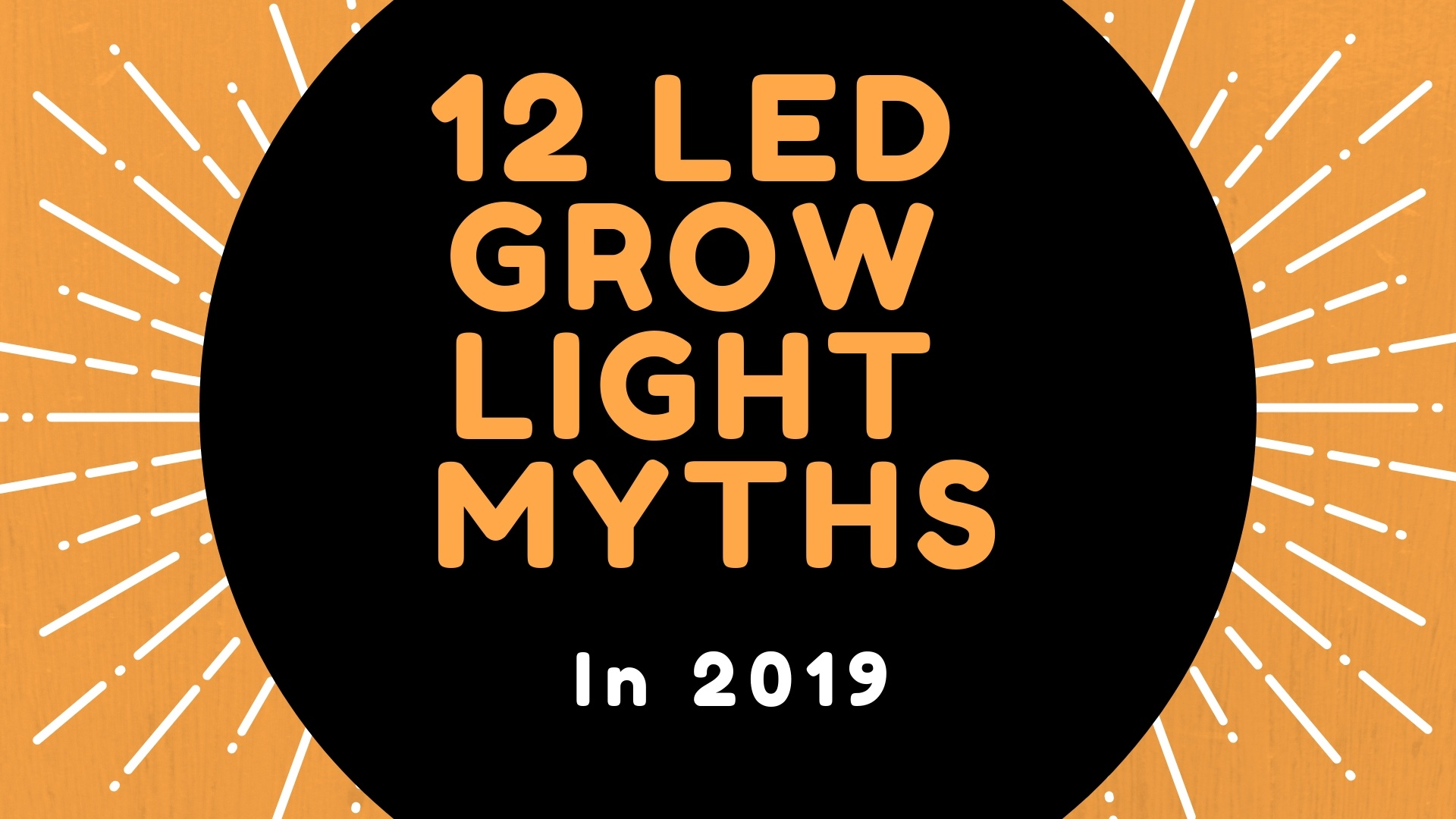 12 LED Grow Light Myths