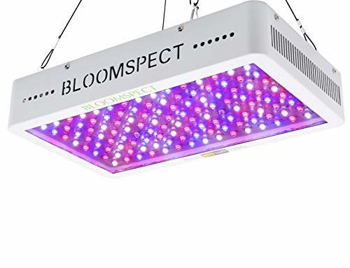 Bloomspect 1200w Led Grow Light Review for You