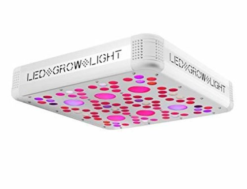 Vivosun led grow light review in 2019 For You