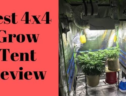 Most Popular 04 Best 4×4 Grow Tent Review in 2019-You should Never Miss !