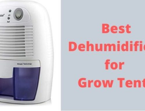Top 4 best dehumidifiers For Grow Tents – Never Miss !
