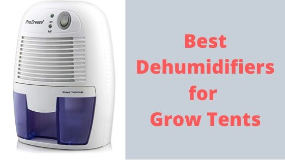 Best Dehumidifiers for Grow Tents
