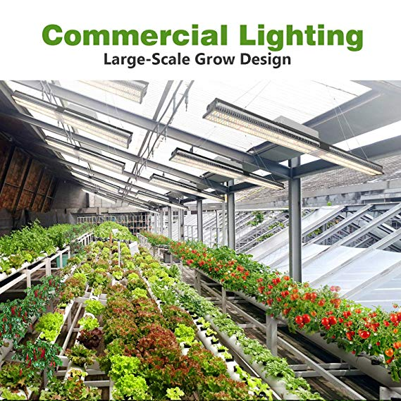 Best Led Grow Light For 4x8 Tent In 2020 For Your Plants