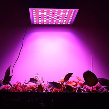 Top 5 Best 45 watt led grow lights review for you