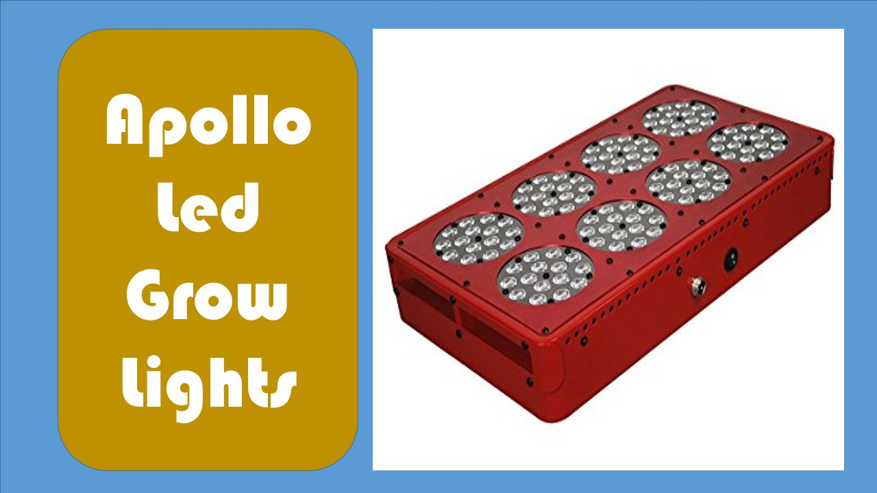 Top 05 Best Apollo Led Grow Lights Reviews For Indoor