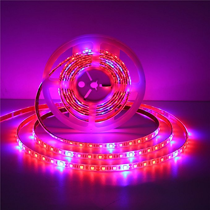Led Grow Light Strips Review Best For Your Plants